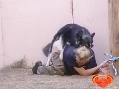 Jovencita latina haciendo zoofilia con el caballo