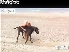 El perro se folla a la hija del granjero