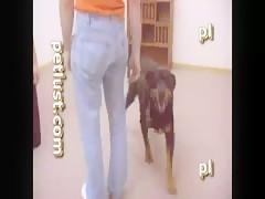 Adolescente jugando con su perro en el cuarto