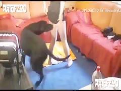 Follada con el can sobre la cama