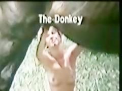 Le da el culo a su caballo