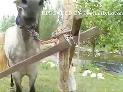 Caperuzorra y el lobo