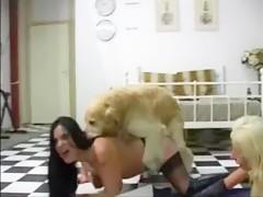 Rubia con perro blanco y negro
