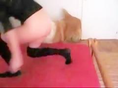 Tetuda rubia se unta en nata para el perro