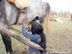 Me caso y follo con mi caballo Hentai