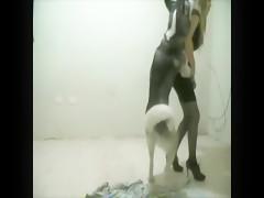 Dos bocas para su perro