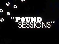Pound Sessions