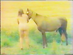Horse Lovers 1